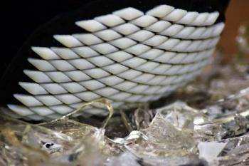 Ученые напечатали на 3D-принтере броню наподобие раковины панцирных моллюсков